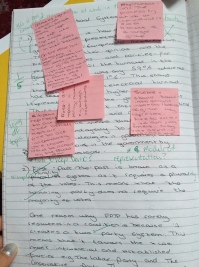 Yr12 politics student's first assessment